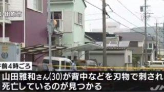 愛知県田原市逃走.jpg